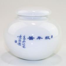 Chinesische Porzellan-Teedose
